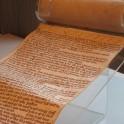 MS544 Magna Carta 005